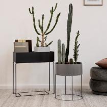 Кутия за растения